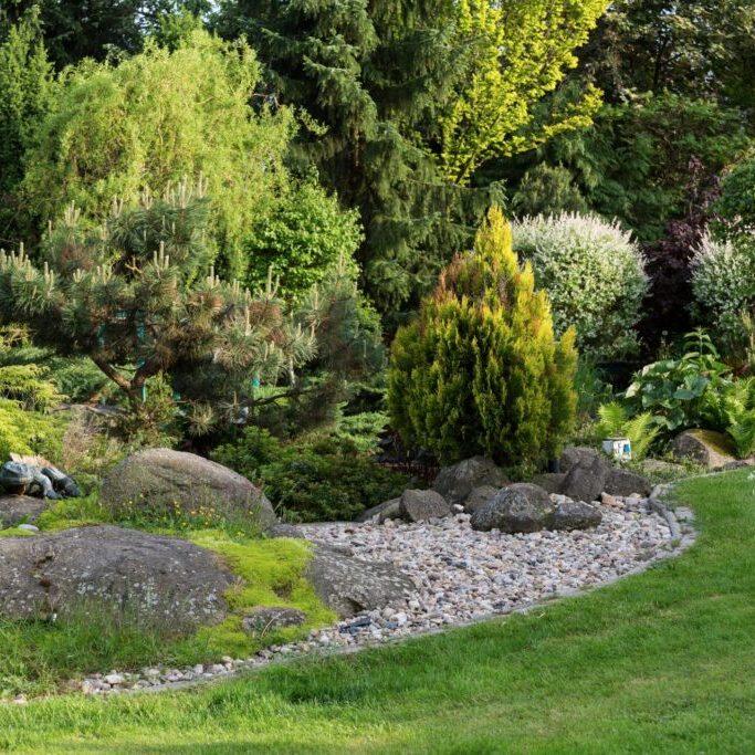a landscape on a garden